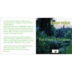 Les Musiques magiques : Santé, Abondance (1 CD)