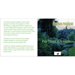 Les Musiques magiques : Amour Succés (1 CD)